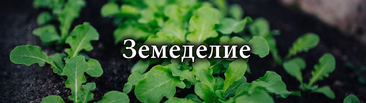 Постер - Земеделие