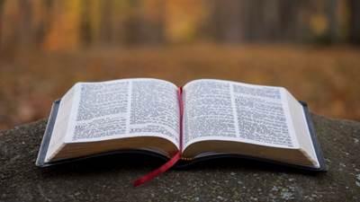 Bible400