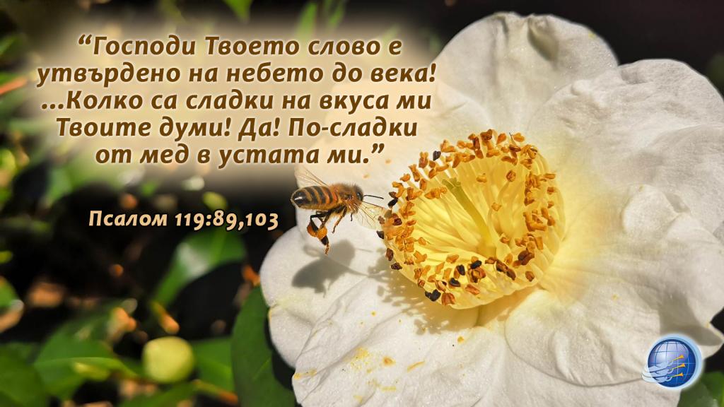 Псалом 119-89-103