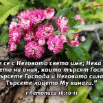 1Letopisi 16-10-11 - Copy