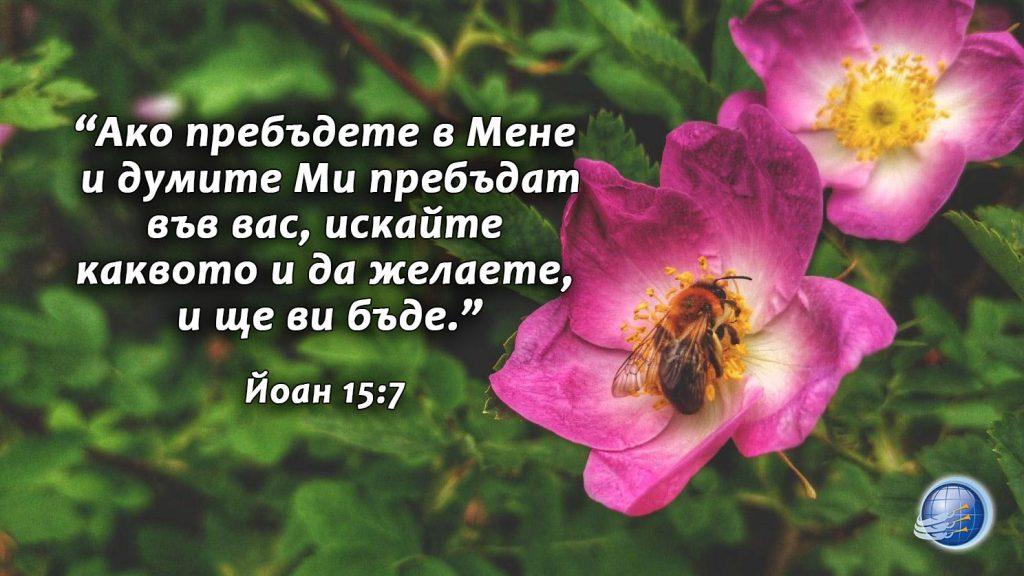 Joan 15-7