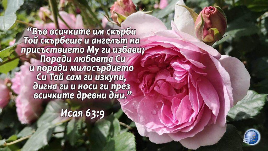 Isaq 63-9 - Copy