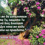 Psalom 143-10 - Copy
