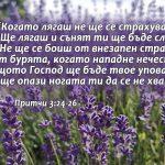 Pritchi 3-24-26