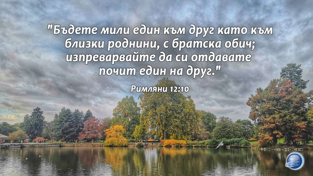 Rimlqni12-10