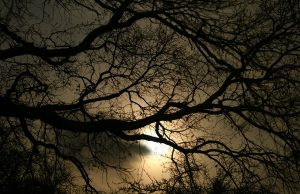 506-darkness