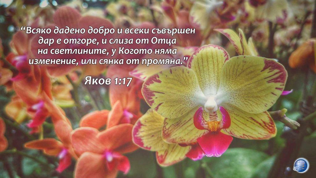 Яков 1-17 - Copy