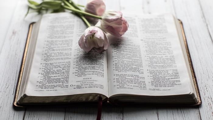 Bible-flower800