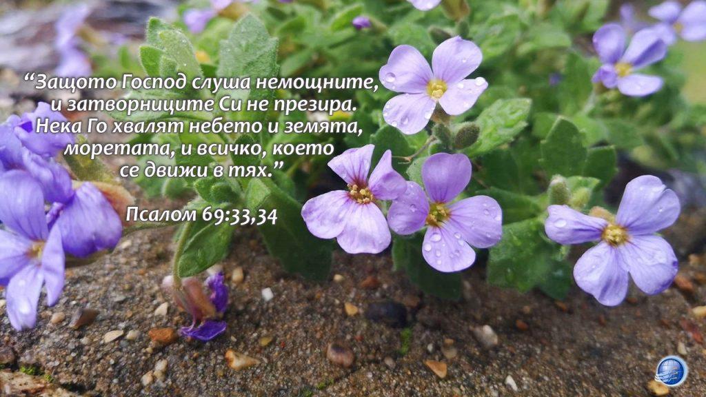 Psalom 69-33-34 - Copy