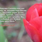 Rimlqni 5-7-8 - Copy