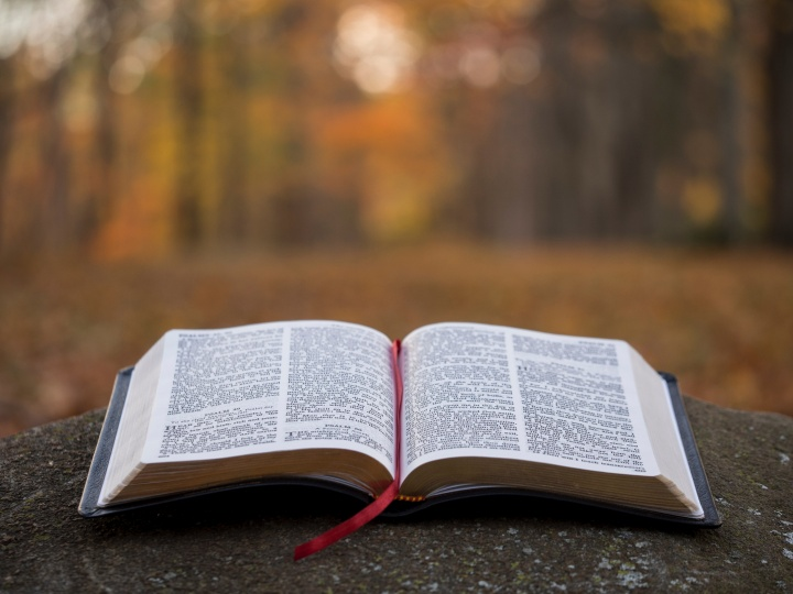 bible-faq-does-the-bible-promote-racism