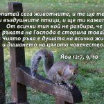Jov 12-7-9-10 - Copy