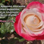 Mark 11-24 - Copy