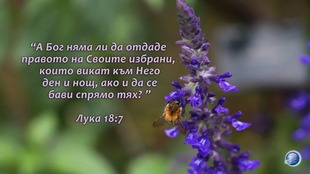 Luka 18-7 - Copy