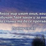 Psalmi 119-165 - Copy