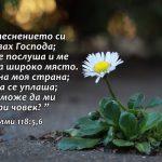 Psalmi 118-5-6 - Copy
