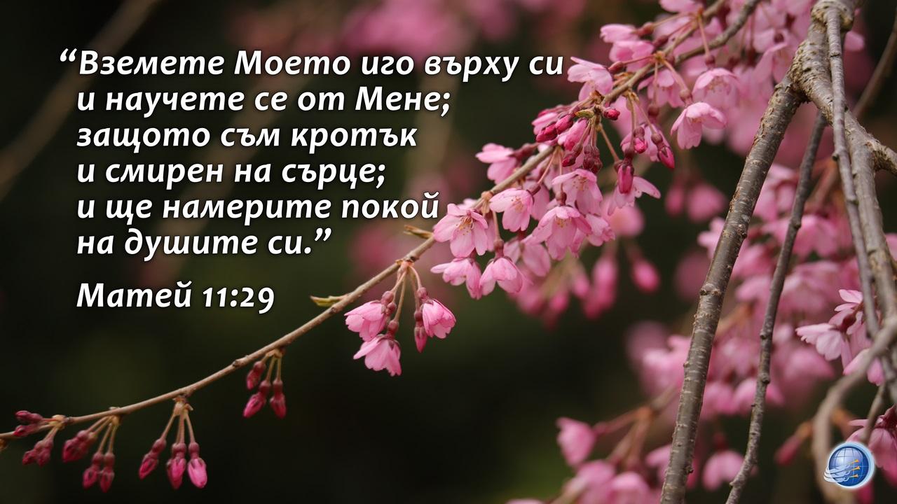 Matei 11-29 - Copy