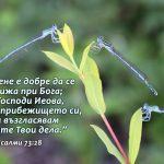 Psalmi 73-28 - Copy