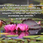 Isaq38-17 - Copy